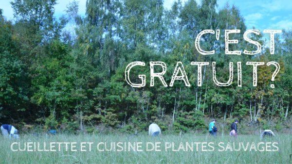 Les Equipes Populaires - Cueillette et cuisine avec les plantes sauvages!