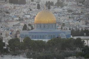 contrastes palestine -les equipes populaires